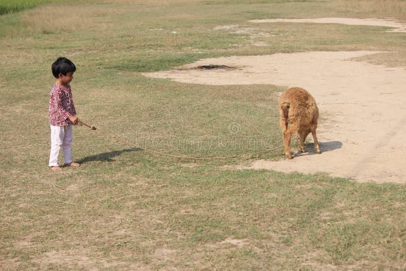 Το παιδί παίζει στοκ φωτογραφία με δικαίωμα ελεύθερης χρήσης