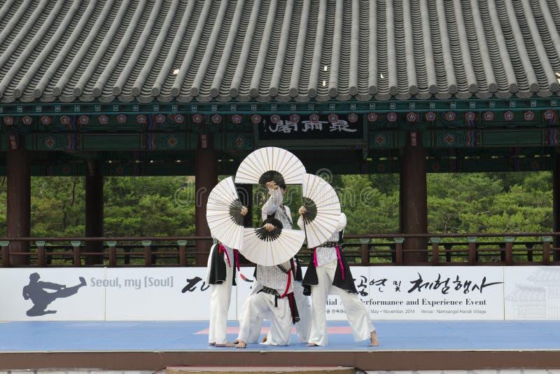 Το παραδοσιακό κορεατικό γεγονός απόδοσης και εμπειρίας πολεμικής τέχνης παρουσιάζει στοκ φωτογραφίες