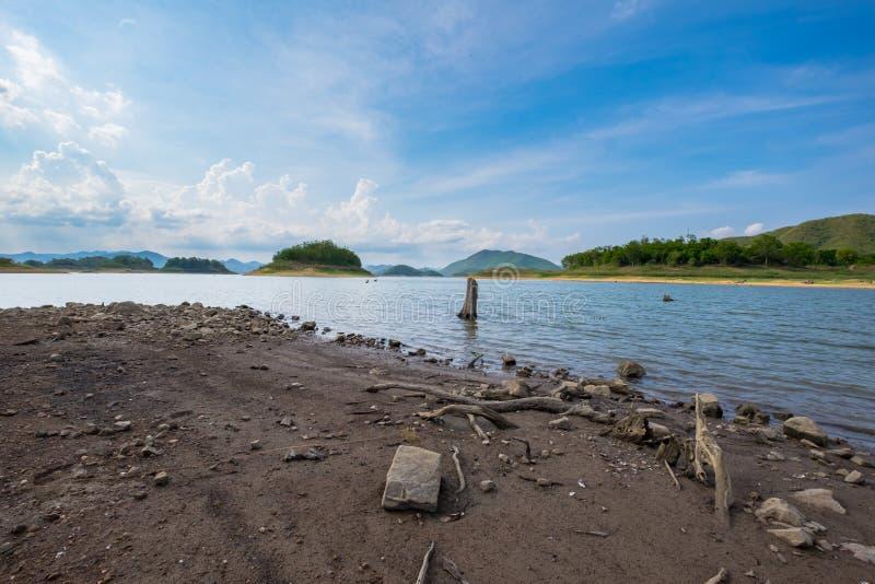Το παλαιό δέντρο είναι εμφανίζεται πέρα από τη λίμνη το καλοκαίρι στοκ εικόνες
