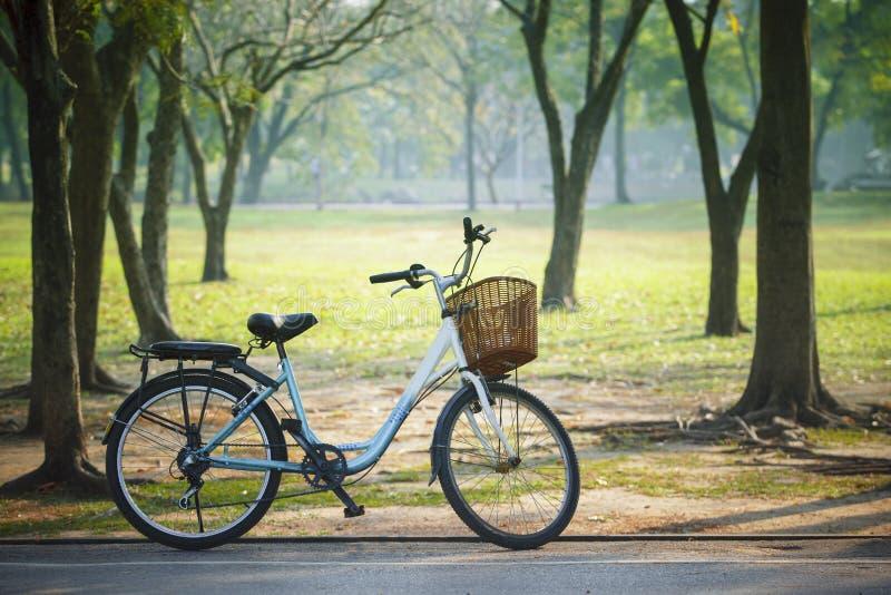 Το παλαιό εκλεκτής ποιότητας ποδήλατο σταθμεύει δημόσια με την πράσινη έννοια φύσης στοκ εικόνες