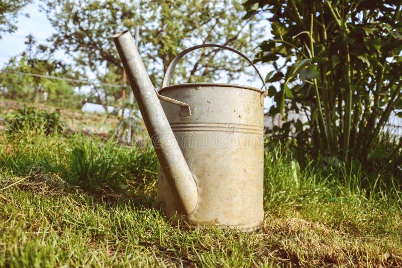 Το παλαιό πότισμα αργιλίου μπορεί στη χλόη στον κήπο στο χρόνο άνοιξη Κλείστε επάνω του δοχείου ποτίσματος μετάλλων στην άνοιξη στοκ φωτογραφία