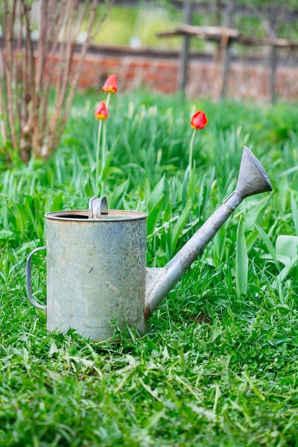 Το παλαιό, σκουριασμένο πότισμα μπορεί στεμένος στη χλόη στοκ φωτογραφία με δικαίωμα ελεύθερης χρήσης