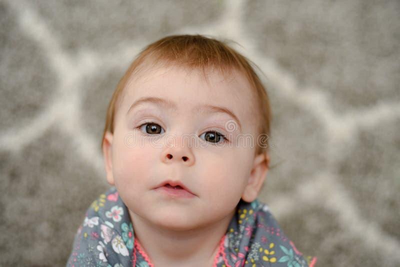 Το περίεργο παιδί μοιάζει με το ερώτημα μιας ερώτησης, ενός έτους βρέφος στοκ φωτογραφίες με δικαίωμα ελεύθερης χρήσης