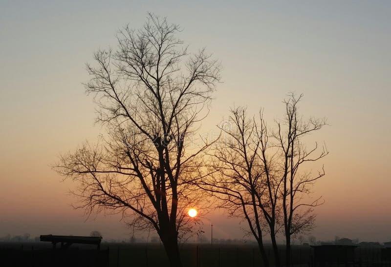 Το περασμένο φθινόπωρο ηλιοβασίλεμα στοκ φωτογραφίες με δικαίωμα ελεύθερης χρήσης