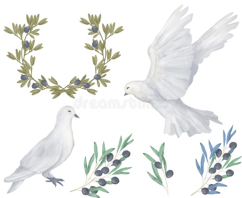 Το περιστέρι και το ψηφιακό πουλί watercolor σχεδίων τέχνης συνδετήρων ελιών πετούν το περιστέρι ειρήνης για την απεικόνιση γαμήλ απεικόνιση αποθεμάτων