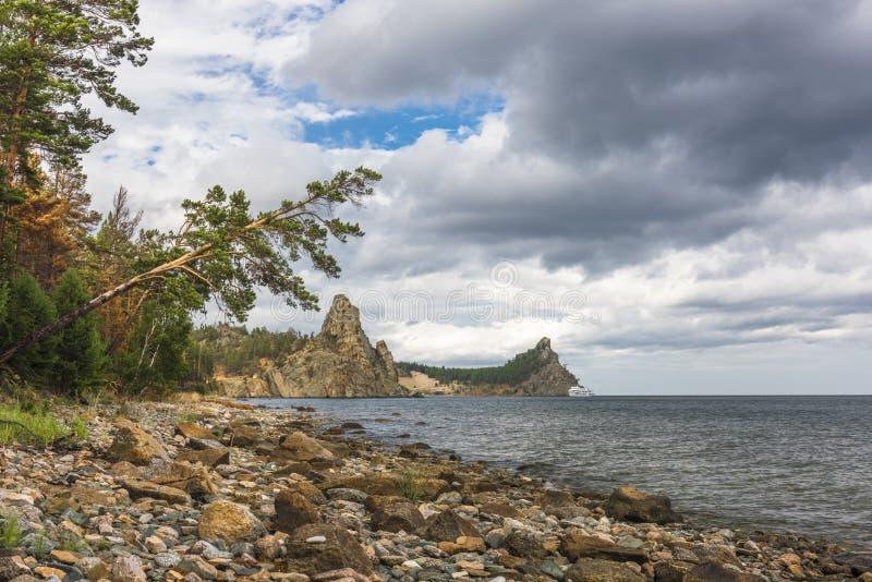 Το πεύκο περιήλθε σχεδόν στη λίμνη στοκ φωτογραφία με δικαίωμα ελεύθερης χρήσης