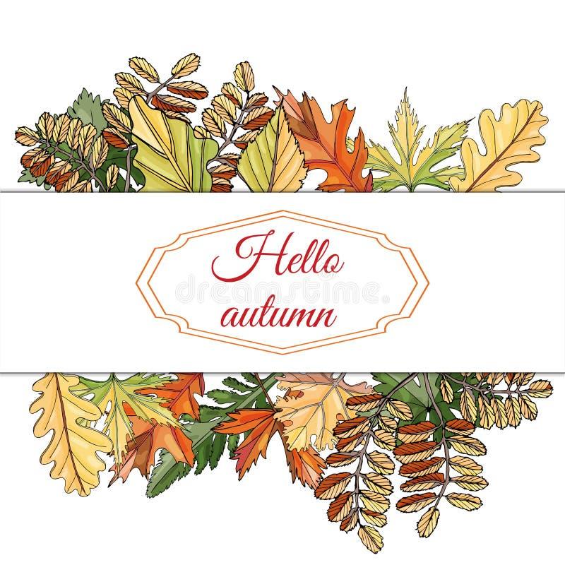 Το πλαίσιο ορθογωνίων με τη θέση για το κείμενο και το φθινόπωρο χρωματίζουν τα φύλλα των διαφορετικών δέντρων και των λουλουδιών διανυσματική απεικόνιση