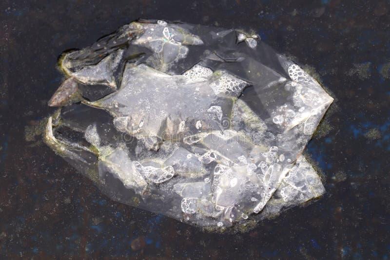 Το πλαστικό φίμωμα αποβλήτων στο νερό σάπιο, πλαστική τσάντα αποβλήτων που επιπλέει στο νερό είναι σάπιο στη λίμνη με το βρύο και στοκ φωτογραφία με δικαίωμα ελεύθερης χρήσης