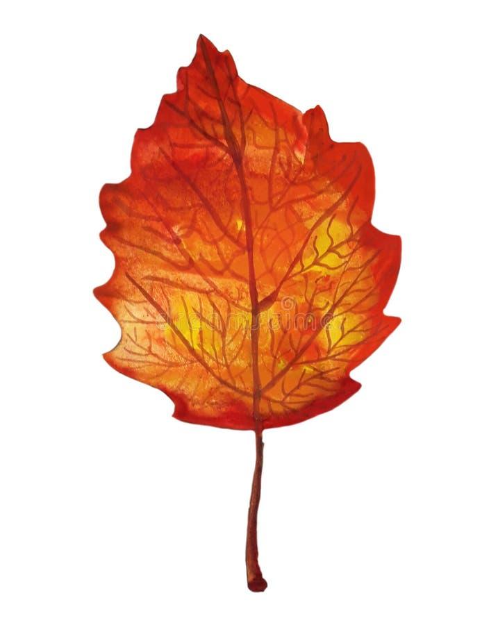 Το πορτοκαλί watercolor φθινοπώρου το φύλλο στοκ εικόνα