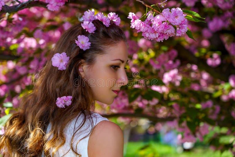 Το πορτρέτο της νέας ελκυστικής γυναίκας με τα ρόδινα λουλούδια στην τρίχα της είναι στο άσπρο φόρεμα στο sakura ανθών στο πάρκο  στοκ εικόνες