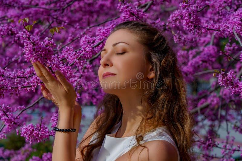 Το πορτρέτο της νέας ελκυστικής γυναίκας με την καφετιά τρίχα θέτει την προσφορά στο ρόδινο δέντρο ανθών στοκ φωτογραφία με δικαίωμα ελεύθερης χρήσης