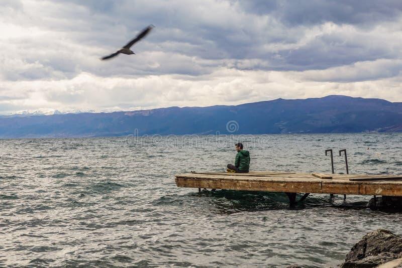 Το πουλί που πετά στον ουρανό ενώ επανδρώνει κάθεται στην ήρεμη λίμνη στοκ φωτογραφίες με δικαίωμα ελεύθερης χρήσης