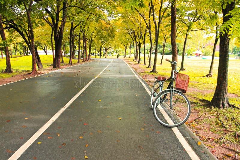 Το ποδήλατο στην πορεία του πάρκου στοκ φωτογραφία με δικαίωμα ελεύθερης χρήσης