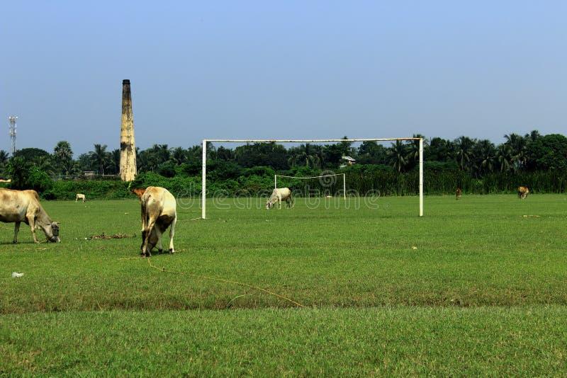 το ποδόσφαιρο αφήνει το παιχνίδι στοκ φωτογραφίες