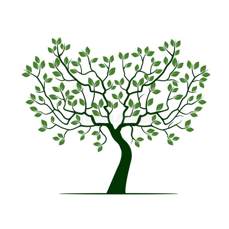 Το πράσινο δέντρο με βγάζει φύλλα απεικόνιση αποθεμάτων