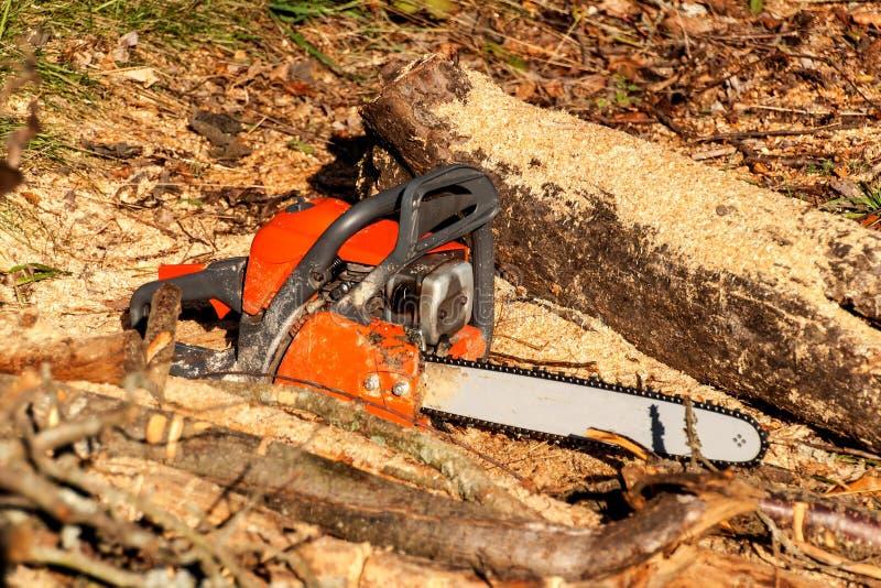 Το πριόνι αλυσίδων βρίσκεται στο ξύλο Ξύλινη προετοιμασία για τη θέρμανση οικολογική θέρμανση Εργασία με το πριόνι Πριόνι βενζίνη στοκ φωτογραφίες με δικαίωμα ελεύθερης χρήσης