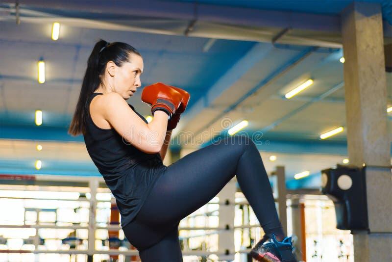 Το προκλητικό αθλητικό κορίτσι κάνει ένα λάκτισμα στη γυμναστική η γυναίκα στα εγκιβωτίζοντας γάντια εκπαιδεύει το γόνατο στοκ φωτογραφία