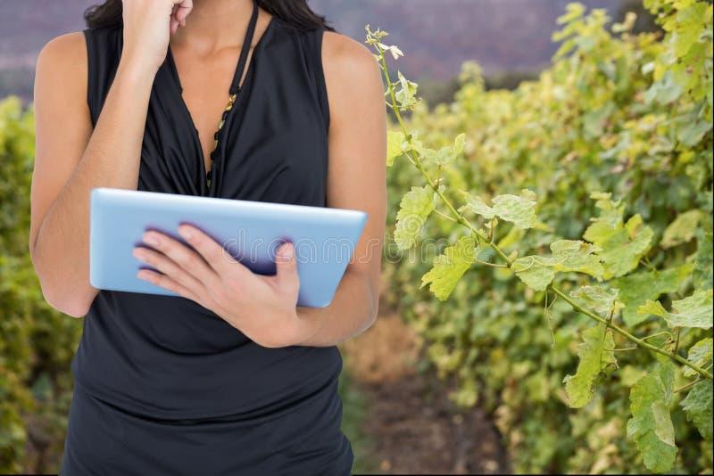 Το πρότυπο γυναικών κρατά έναν υπολογιστή ταμπλετών στο κλίμα αμπελώνων στοκ φωτογραφίες