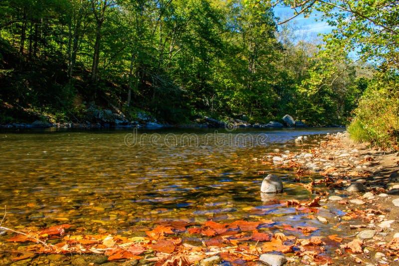 Το πρόωρο φθινόπωρο στον ποταμό Farmington στοκ εικόνα
