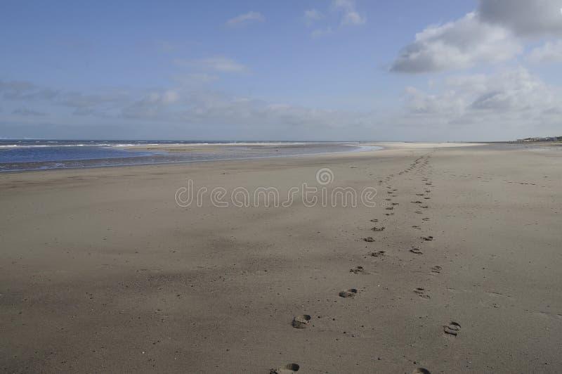 το πόδι Κάτω Χώρες παραλιών τυπώνει την ακτή στοκ φωτογραφίες με δικαίωμα ελεύθερης χρήσης