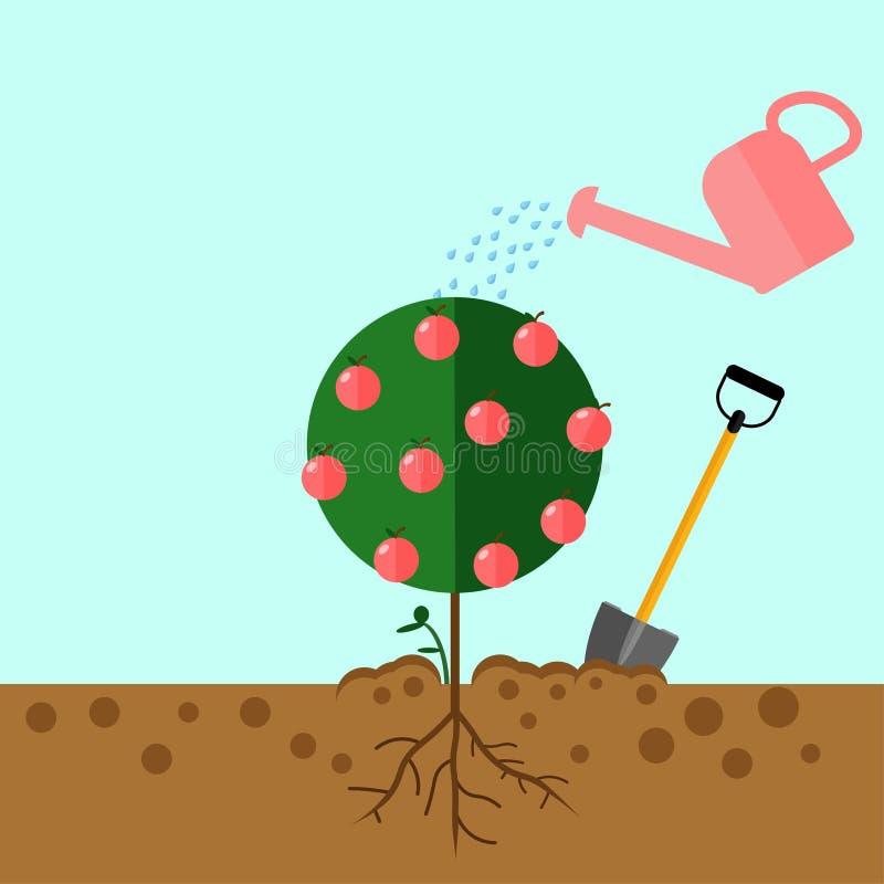 Το πότισμα μπορεί ψεκασμοί να ποτίσει τις πτώσεις Αυξηθείτε το δέντρο από το δέντρο σπόρου Νεαρός βλαστός, δενδρύλλιο με το φτυάρ ελεύθερη απεικόνιση δικαιώματος