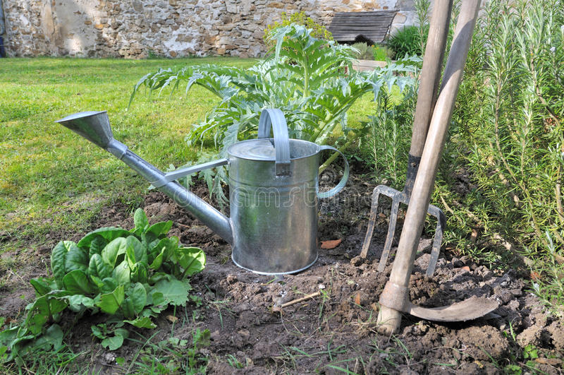 Το πότισμα μπορούν και τα εργαλεία κηπουρικής στοκ εικόνα με δικαίωμα ελεύθερης χρήσης