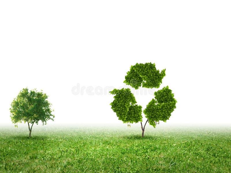 το πλαστικό ανακύκλωσης σχοινί έννοιας μπουκαλιών έδεσε το ύδωρ σπάγγου στοκ φωτογραφία