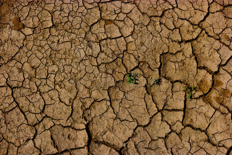 Το ραγισμένο χώμα - γήινη παγκόσμια αύξηση της θερμοκρασίας λόγω του φαινομένου του θερμοκηπίου, ξηρασία στην Αφρική - ράγισε τη  στοκ εικόνες