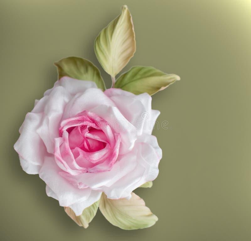 Το ρεαλιστικό λουλούδι μεταξιού υφάσματος στα ρόδινα και άσπρα χρώματα αυξήθηκε χέρι - που έγινε στο πράσινο υπόβαθρο ελιών στοκ εικόνες με δικαίωμα ελεύθερης χρήσης