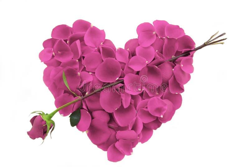 το ροζ πετάλων καρδιών βε&l στοκ φωτογραφία