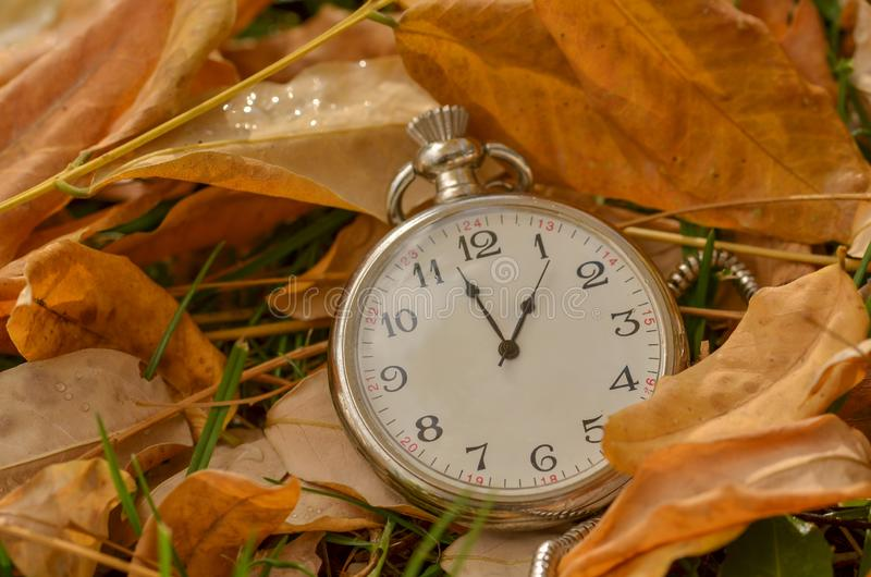 Το ρολόι τσεπών είναι στα φύλλα φθινοπώρου στοκ εικόνες