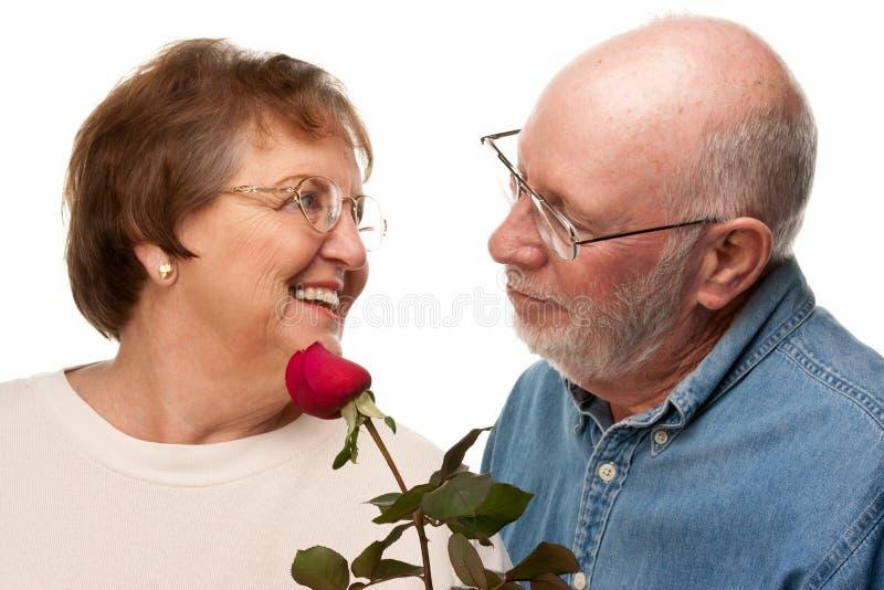 Το ρομαντικό ανώτερο δόσιμο συζύγων κόκκινο ανήλθε στη σύζυγο στοκ φωτογραφία με δικαίωμα ελεύθερης χρήσης