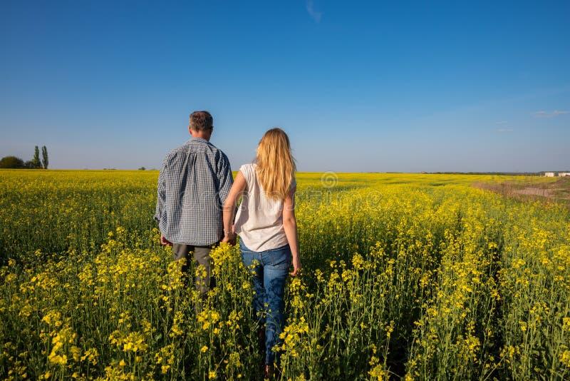 Το ρομαντικό ζεύγος περπατά μέσω του τομέα των κίτρινων λουλουδιών στοκ εικόνα με δικαίωμα ελεύθερης χρήσης