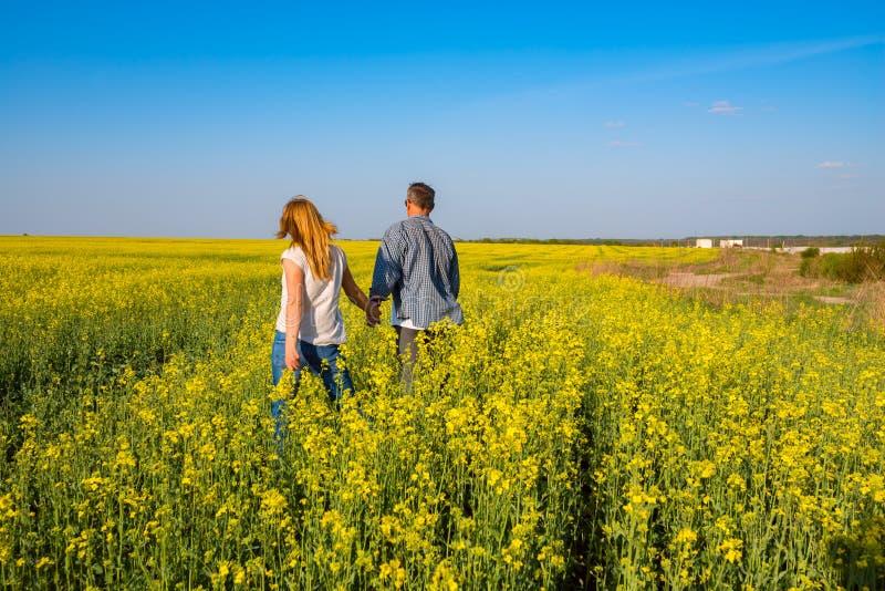 Το ρομαντικό ζεύγος περπατά μέσω του τομέα των κίτρινων λουλουδιών στοκ φωτογραφίες