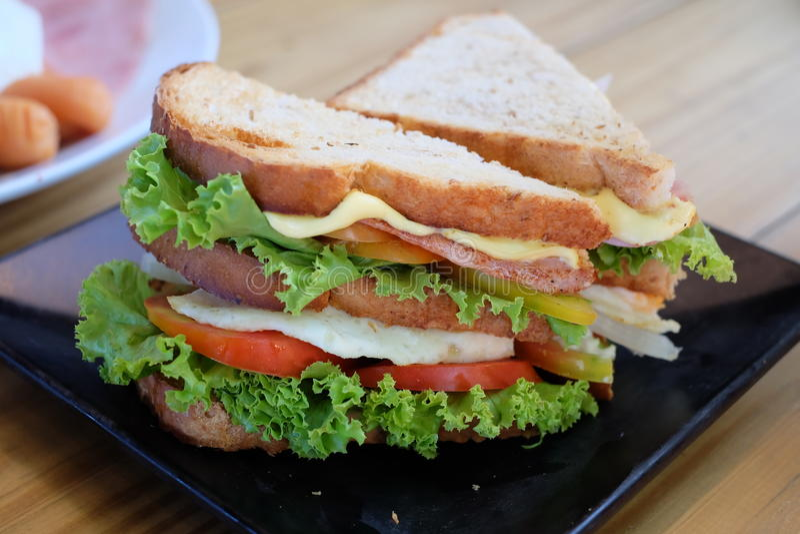 Το σάντουιτς υγιές έτοιμο ο τρώει 2 στοκ φωτογραφία με δικαίωμα ελεύθερης χρήσης