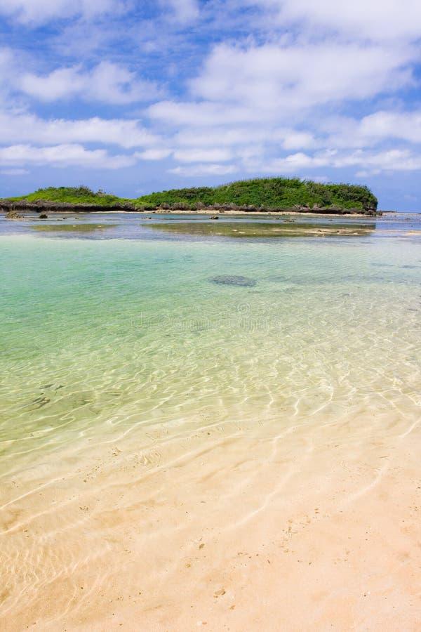 το σαφές κοράλλι λικνίζει τα ύδατα στοκ φωτογραφία με δικαίωμα ελεύθερης χρήσης
