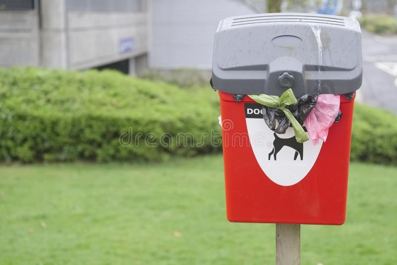 Το σημάδι αποβλήτων poo σκυλιών μόνο στο κόκκινο δοχείο πέρα από πάρα πολλούς ροής πάρκο τσαντών σκυλακιών που πέφτουν έξω δημόσι στοκ φωτογραφία με δικαίωμα ελεύθερης χρήσης
