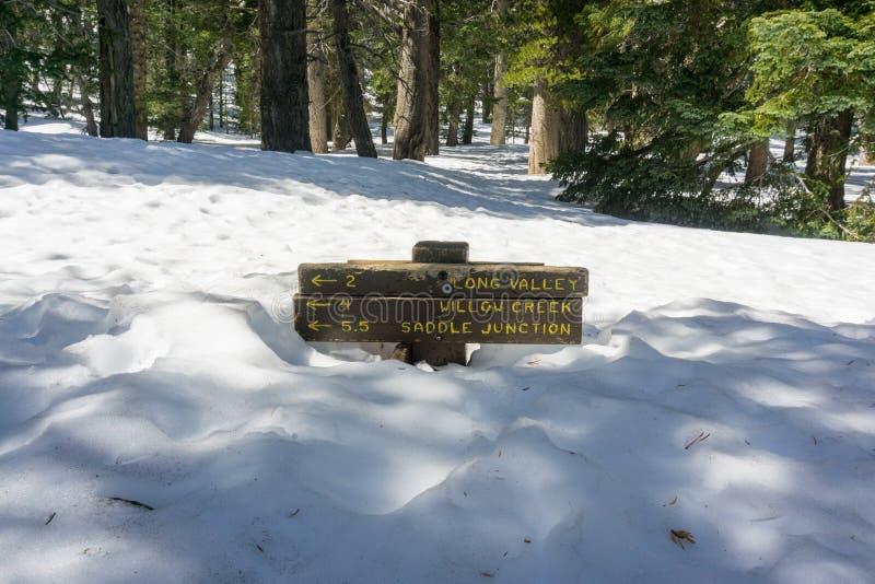 Το σημάδι ιχνών που θάβεται σχεδόν στο χιόνι, τοποθετεί το κρατικό πάρκο SAN Jacinto, Καλιφόρνια στοκ φωτογραφία με δικαίωμα ελεύθερης χρήσης