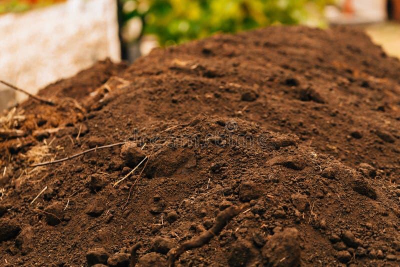 Το σκοτεινό εύφορο χώμα υποβάθρου με τις ρίζες κλείνει επάνω στοκ εικόνες