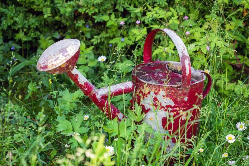 Το σκουριασμένο κόκκινο πότισμα μπορεί στον κήπο στοκ φωτογραφίες με δικαίωμα ελεύθερης χρήσης