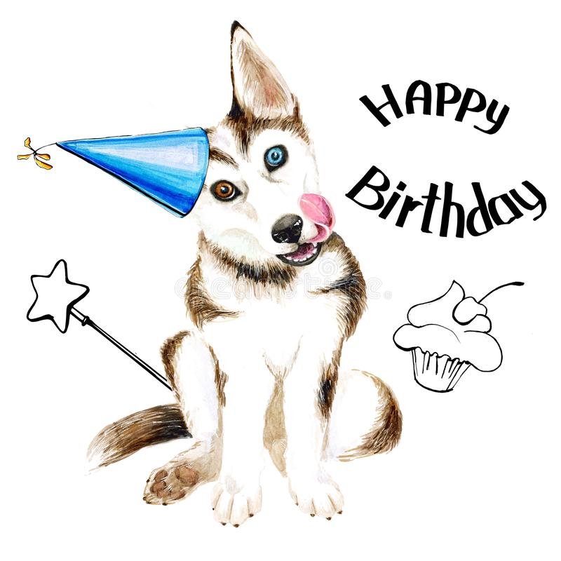 Το σκυλί αναπαράγει γεροδεμένο Χαριτωμένο κουτάβι με τα μπλε μάτια Γενέθλια η ανασκόπηση απομόνωσε το λευκό απεικόνιση αποθεμάτων