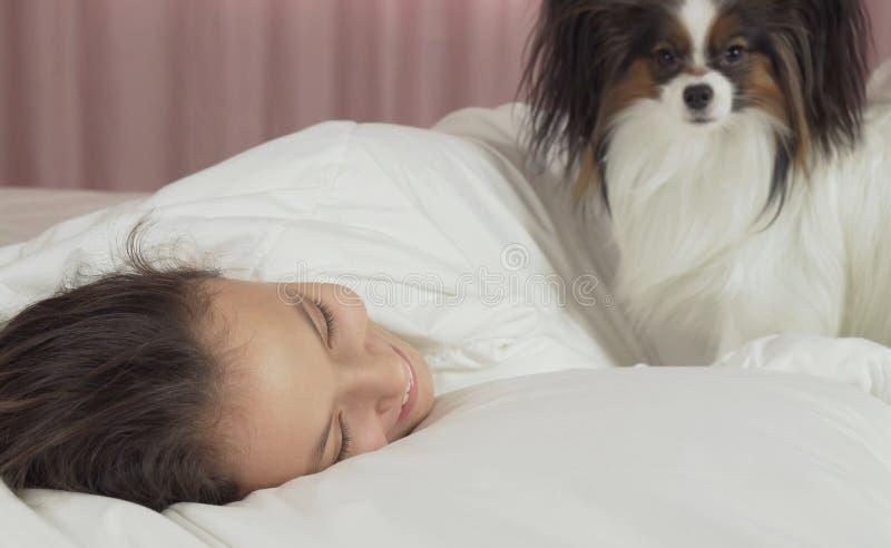 Το σκυλί Papillon ξυπνά το κορίτσι εφήβων στο κρεβάτι στοκ εικόνα με δικαίωμα ελεύθερης χρήσης