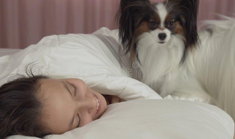 Το σκυλί Papillon ξυπνά το κορίτσι εφήβων στο κρεβάτι στοκ φωτογραφία