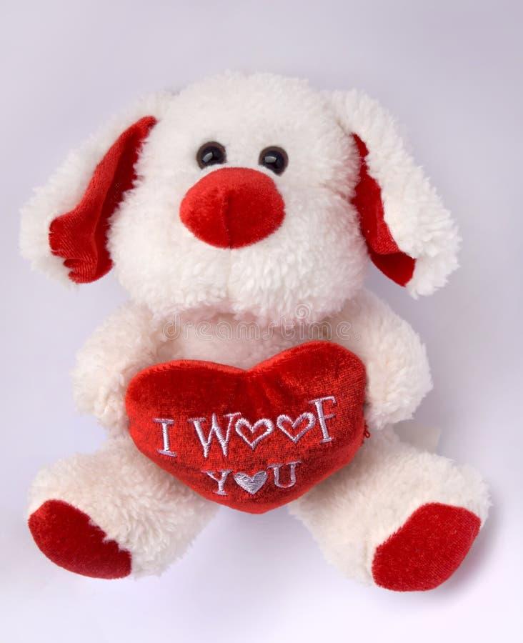 Το σκυλί ι Teddy σας αγαπά στοκ εικόνα με δικαίωμα ελεύθερης χρήσης