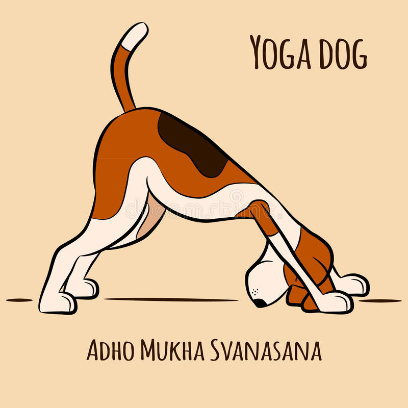 Το σκυλί κινούμενων σχεδίων παρουσιάζει ότι η γιόγκα θέτει Adho Mukha Svanasana απεικόνιση αποθεμάτων