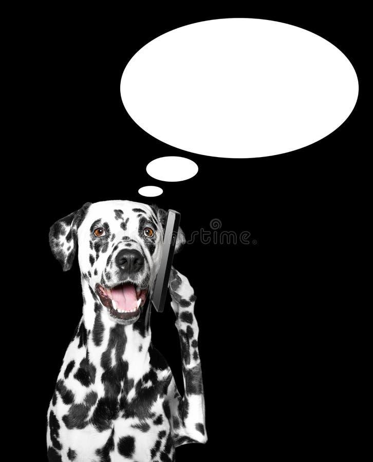Το σκυλί μιλά πέρα από τον κινητό στοκ εικόνα
