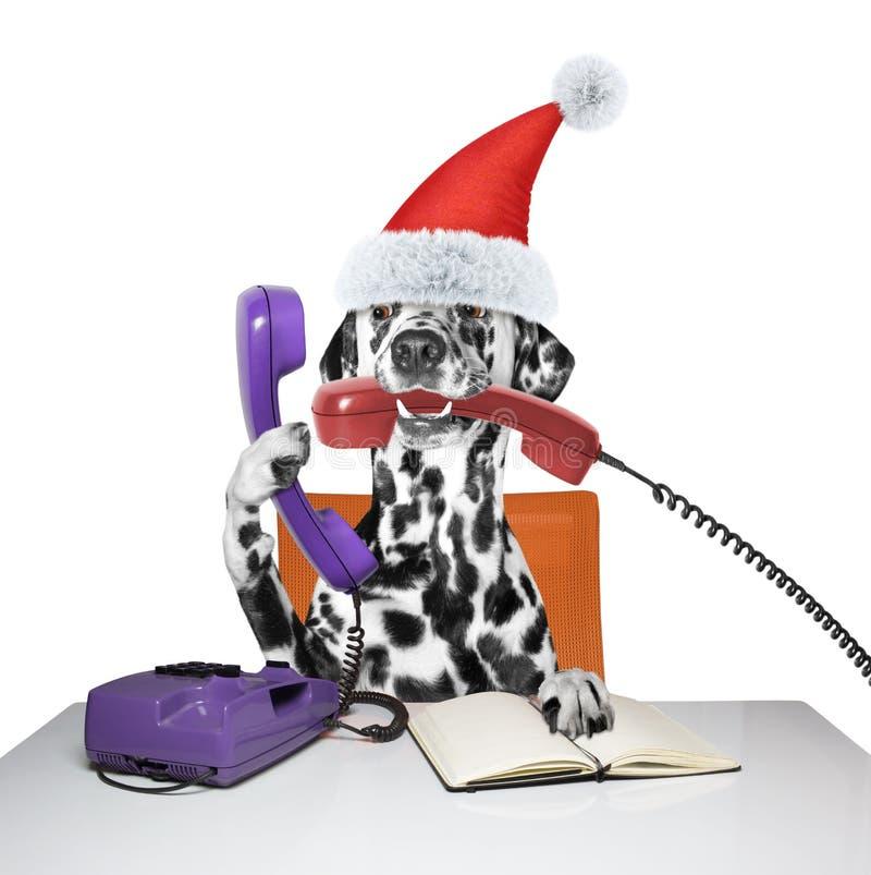 Το σκυλί Santa μιλά πέρα από τα τηλέφωνα στοκ φωτογραφίες