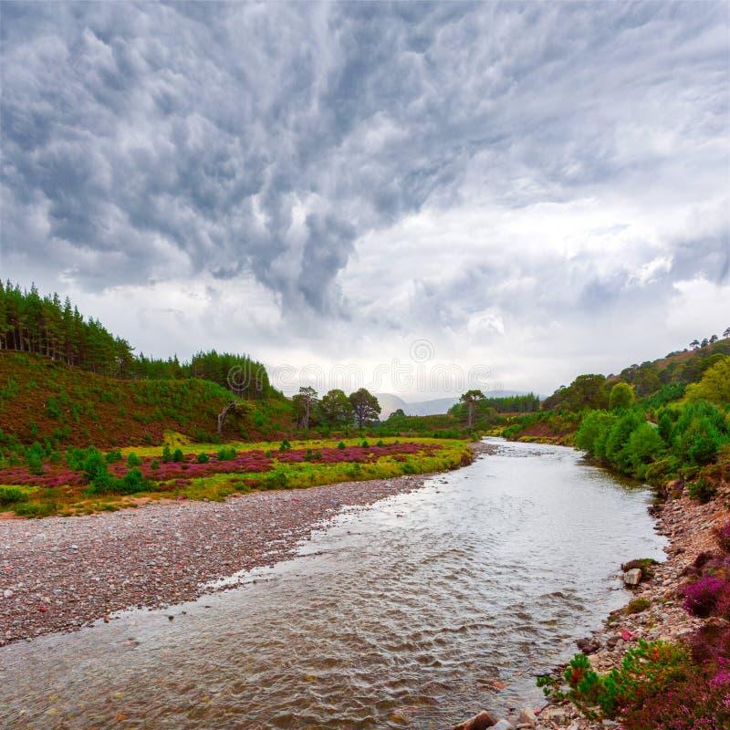 Το σκωτσέζικο τοπίο τοπίων με την ιώδη ερείκη ανθίζει και στοκ εικόνες