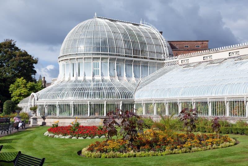 Το σπίτι φοινικών στους βοτανικούς κήπους του Μπέλφαστ, Βόρεια Ιρλανδία στοκ εικόνα