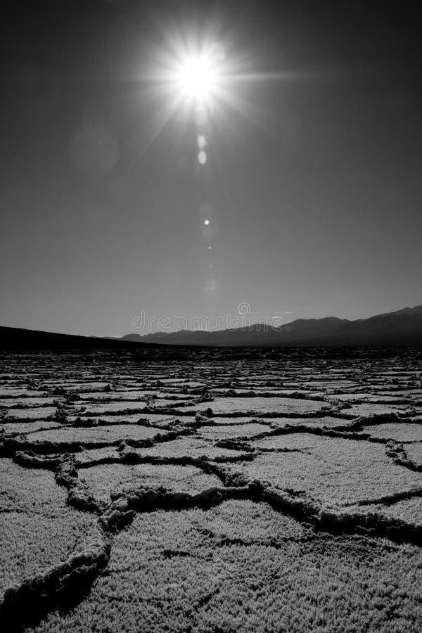 το σπορείο Καλιφόρνια τ&omicron στοκ εικόνες